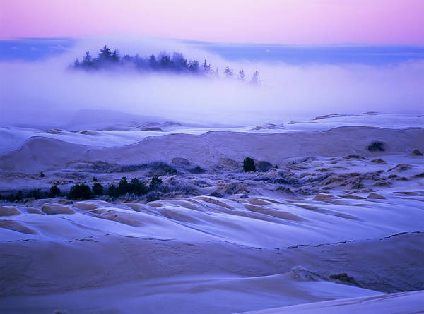 Wall Art - Photograph - Fog Over The Sand Dunes At Dawn by Robert L. Potts