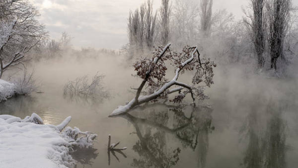 Stream Photograph - Fog Over The Water by Alexander Plekhanov