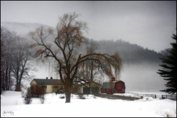Photograph - Fog Over Willlow Farm by Wayne King