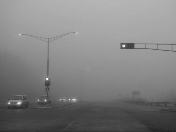 Photograph - Fogged Commute by Wild Thing