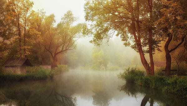 Misty Wall Art - Photograph - Foggy Autumn by Leicher Oliver