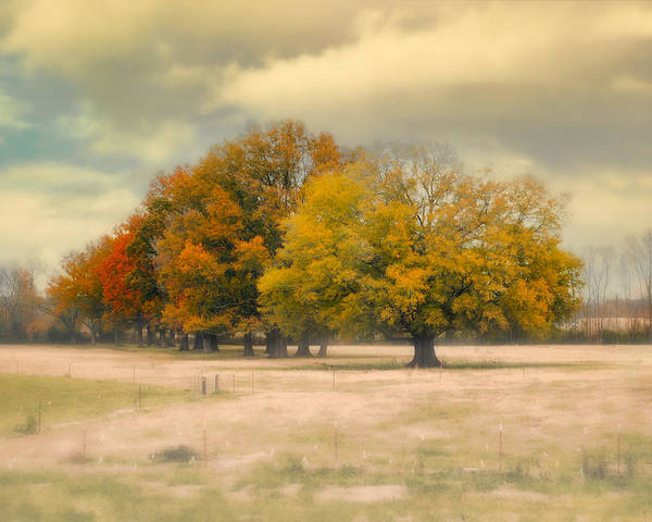 Photograph - Foggy Autumn Morning - Fall Landscape by Jai Johnson