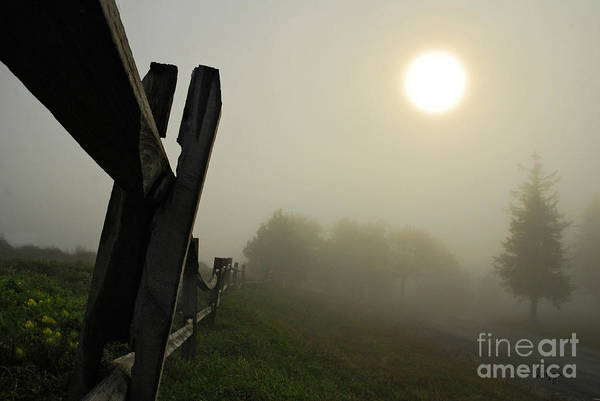 Photograph - Foggy Country Road by Lois Bryan