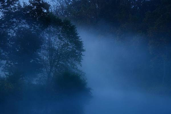 Wall Art - Photograph - Foggy Dawn IIi- Holmdel Park by Angie Tirado
