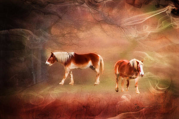 Crazy Horse Photograph - Foggy Day - Featured In Funky Images Group by Ericamaxine Price