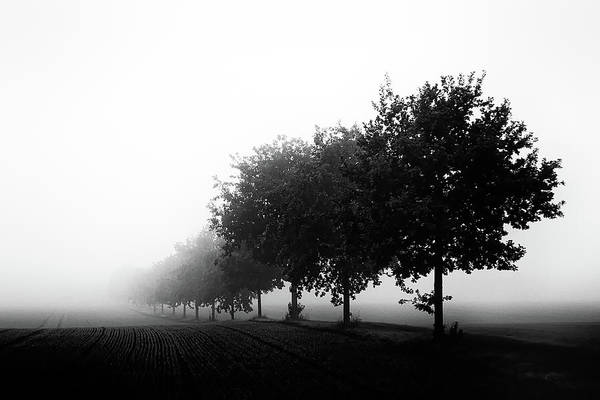 Wall Art - Photograph - Foggy Day by Oliver Buchmann
