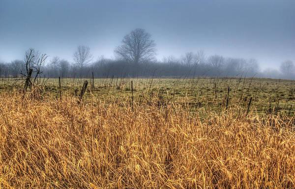Wall Art - Photograph - Foggy Field by Anna-Lee Cappaert