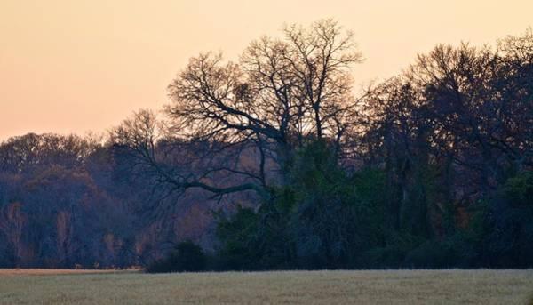 Photograph - Foggy Landscape by Ricardo J Ruiz de Porras