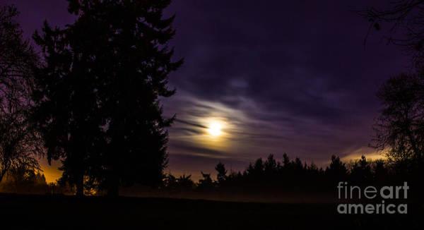 Photograph - Foggy Moonlit Night by Michael Cross
