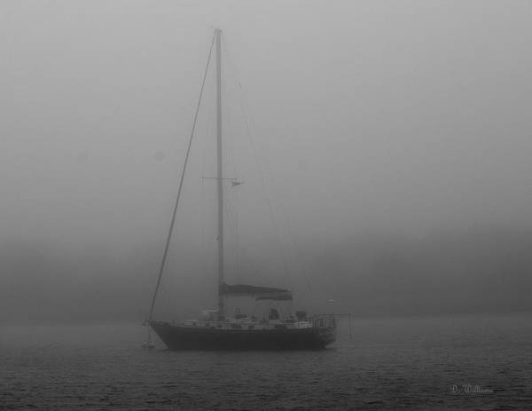 Photograph - Foggy Morning by Dan Williams