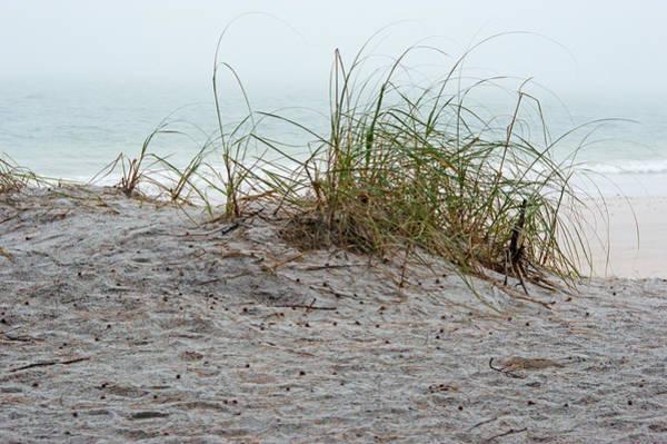 Photograph - Beach Fog I by Gene Norris