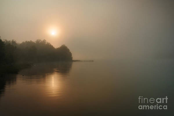 Photograph - Foggy Morning by Larry McMahon