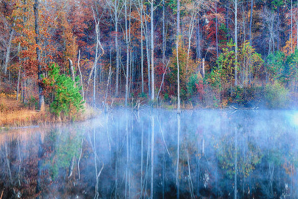 Photograph - Foggy Morning Reflections by Greg Norrell