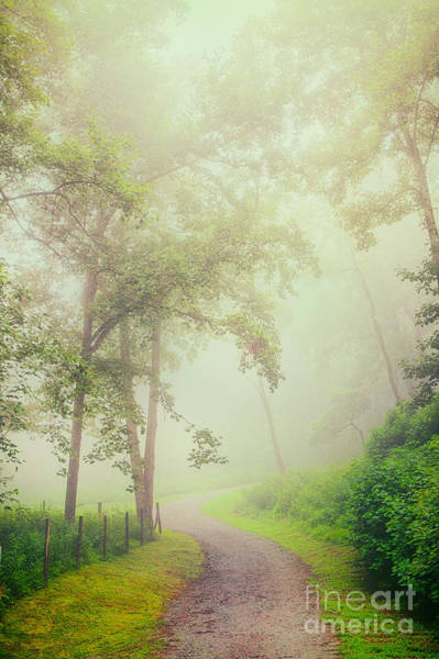 Wall Art - Painting - Foggy Path - Blue Ridge Parkway by Dan Carmichael