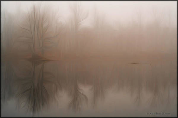 Foggy Reflection Art Print