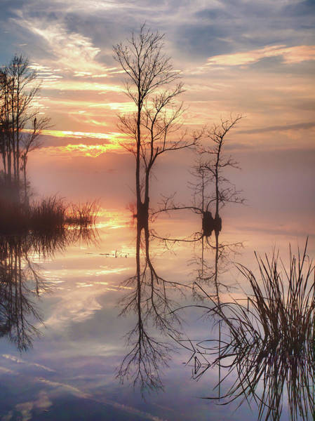 Photograph - Foggy River Evening by Mike Covington