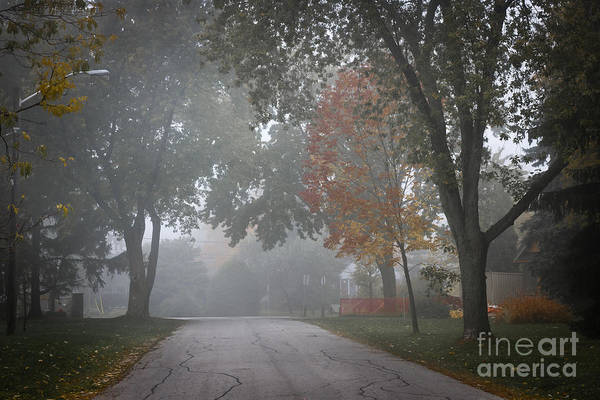 Neighborhood Photograph - Foggy Street by Elena Elisseeva