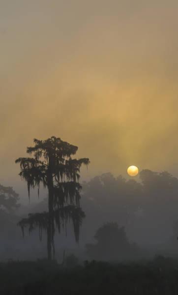 Blye Photograph - Foggy Sunrise II by Kenneth Blye