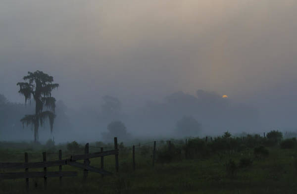 Blye Photograph - Foggy Sunrise by Kenneth Blye