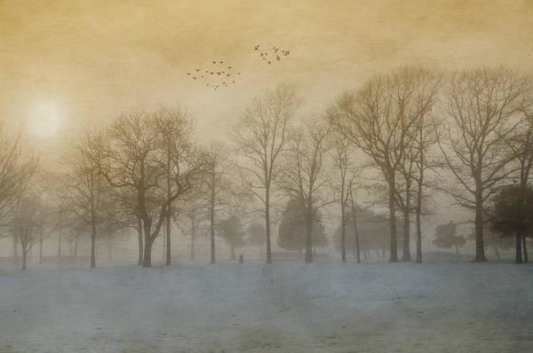 Foggy Sunset Art Print
