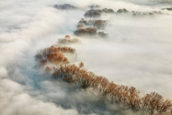 Misty Wall Art - Photograph - Foggy Valley by Fiorenzo Carozzi