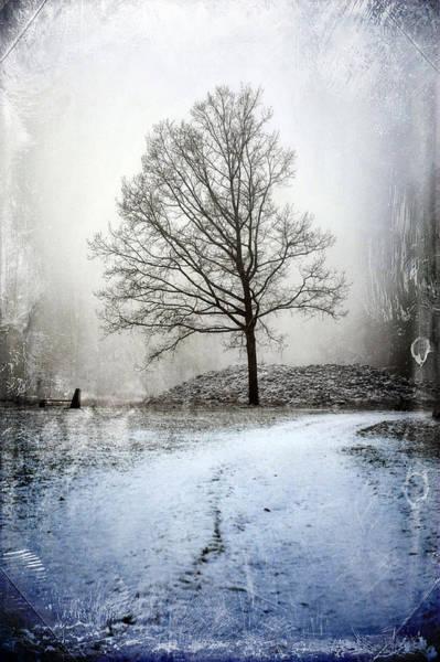 Photograph - Foggy Winter Day by Randi Grace Nilsberg