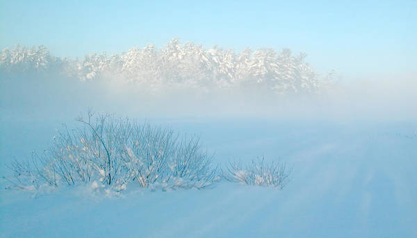 Photograph - Foggy Winter Morning On Mud Lake by Rob Huntley