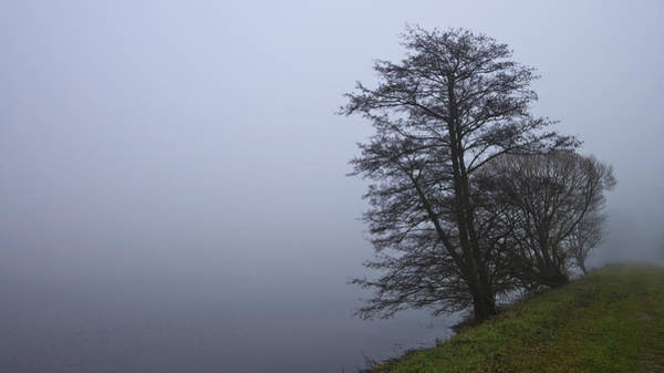 Photograph - Fogy Lakeside by Ivan Slosar