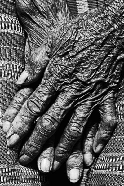 Wall Art - Photograph - Folded Hands 2 by Skip Nall