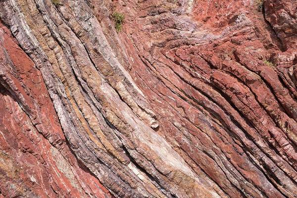 Geomorphology Wall Art - Photograph - Folded Sandstone by David Parker