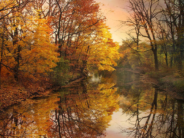 Photograph - Foliage Reflected by Jessica Jenney