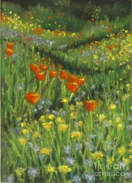 Pastel - Poppy Trail by Laurie Morgan