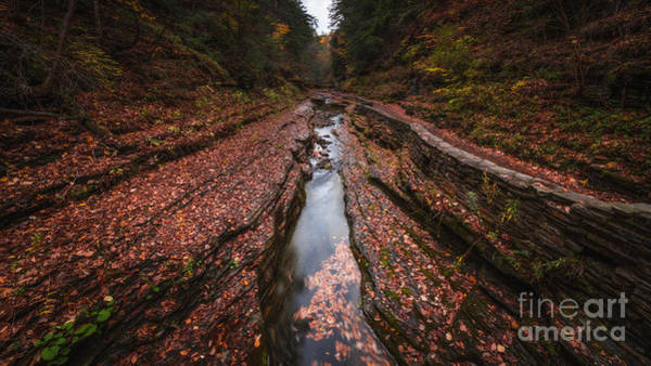 Follow Wall Art - Photograph - Follow The Stream  by Michael Ver Sprill