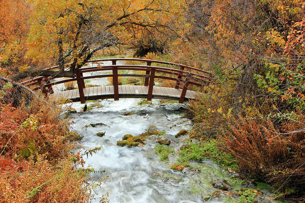 Foot Bridge At Cascade Springs. Art Print