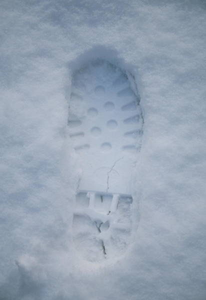Impression Photograph - Footprint In Snow by Tony Craddock/science Photo Library