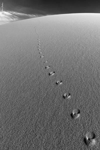 Photograph - Footprints by Alexander Fedin