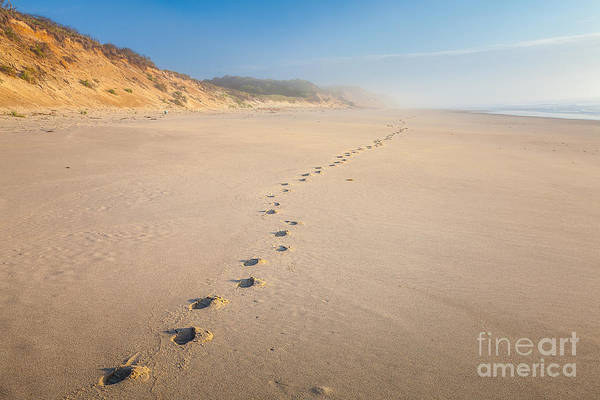 Photograph - Footprints At Nauset Light Beach by Susan Cole Kelly