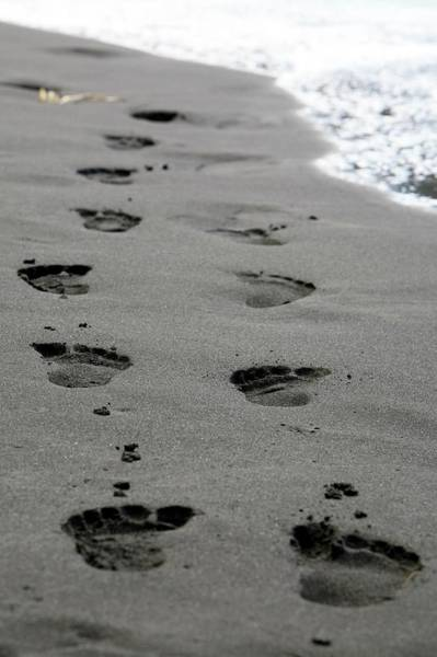 Big Sandy Photograph - Footprints In Black Volcanic Sand by Michael Szoenyi/science Photo Library