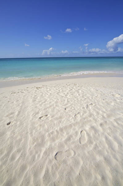 Photograph - Footprints In The Powdery White Sand Of Aruba by David Letts