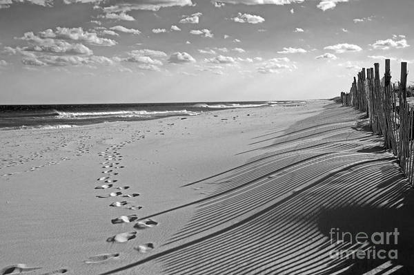 Photograph - Footprints In The Sand by Debra Fedchin