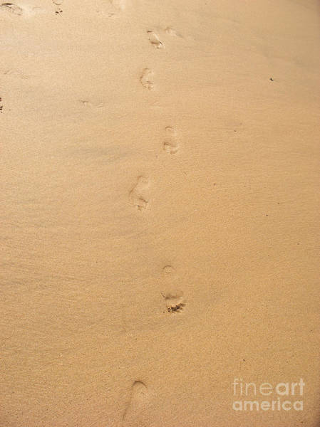 Pixel Photograph - Footprints In The Sand by Pixel  Chimp