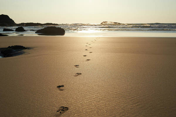 Journey Photograph - Footsteps Leading Towards Sea At Beach by Dougal Waters