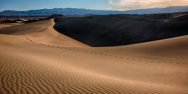 Death Valley National Park Photograph - Footsteps by Peter Tellone