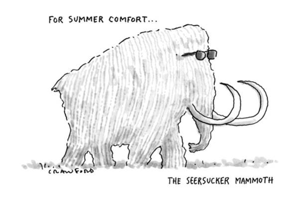 Beauty Drawing - For Summer Comfort...the Seersucker Mammoth: by Michael Crawford