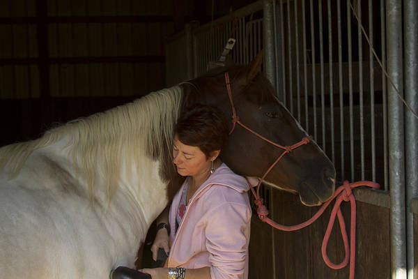 Photograph - For The Love Of A Horse by David Yocum