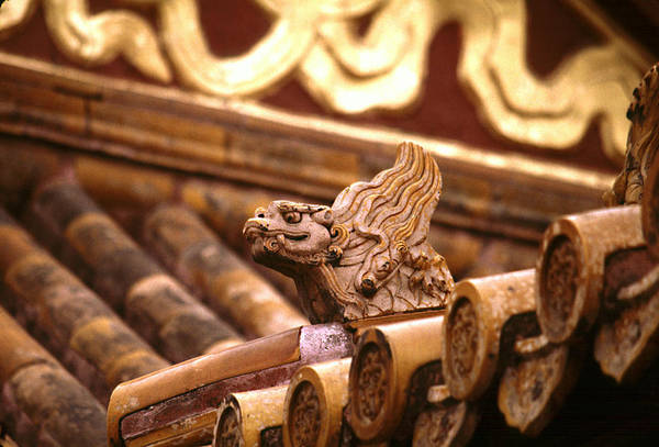 Photograph - Forbidden City Dragon by Michael Kirk