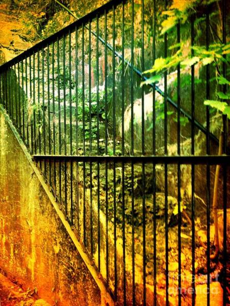 Photograph - Forbidden Stairs by Denise Tomasura