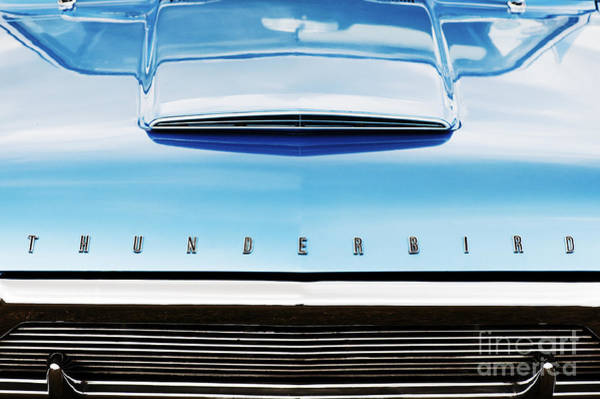 Ford Motor Company Photograph - Ford Thunderbird by Tim Gainey
