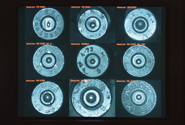 Casing Wall Art - Photograph - Forensic Database Of Bullet Casings by Philippe Psaila/science Photo Library