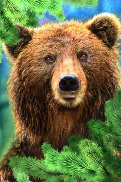 Wall Art - Painting - Forest Bear by MGL Meiklejohn Graphics Licensing